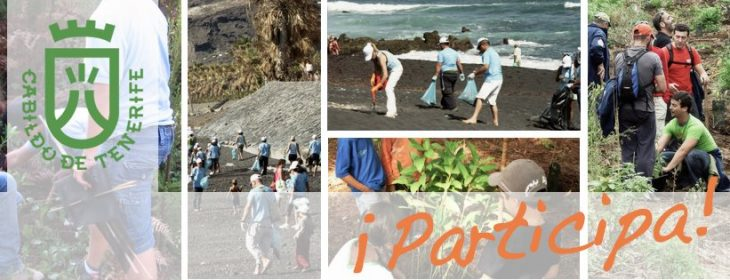 voluntariado ambiental tenerife